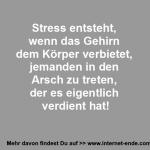 Stress und das Gehirn